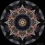 """8 Point Star Neon Mandala"" by annesmandalas"