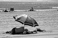 Under The Umbrella - The Beach, 2005