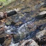 """Winding Creek Trail"" by faithfulheart"