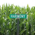 """Harmony."" by dawnmanser"