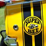 """Super Bee"" by BrentC"
