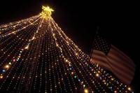 Zilker Tree and Flag
