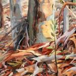 """Eucalyptus"" by margaretlarlham"