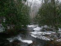 A Cool Rippling Brook in Winter