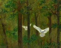 Doves in the Wood