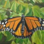 """""""Monarch Butterfly"""" by allisonluci"""