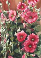 Hollyhocks Along The Fence 1