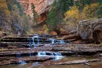 Cascades of the Left Fork in Zion
