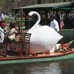 """Swan Boat"" by MichelleCallahan"