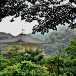 """""""Kinkakuji temple"""" by colhou60"""