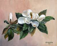 Love - Magnolia Series