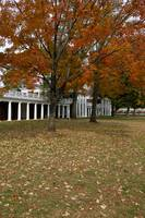 Fall Leaves on The Lawn, University of Virginia, U