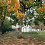 """Blowing Leaves on The Lawn, University of Virginia"" by fineartphoto"