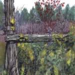 """""""Old Fence in Field"""" by ErictheElder"""