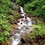 """River Stream"" by Mughil"