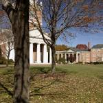 """Trees on The Quad, Wake Forest University"" by fineartphoto"