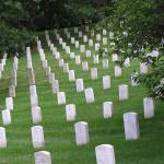 """Arlington Cemetery"" by Nordic"