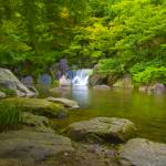 """""""Garden Waterfall"""" by japanese"""