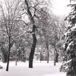 """Wartburg College winter 1992"" by nicelysighted"