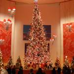 """Giant Christmas tree at Museum of Science and Indu"" by nicelysighted"