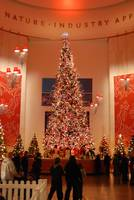Giant Christmas tree at Museum of Science and Indu
