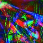 """aquarian celebration"" by pixelviz"