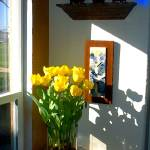 """Yellow Tulips Window View"" by MCARTZ"