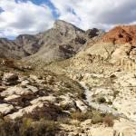 """Calico Basin"" by Jokehawk"
