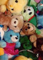 Teddy Bear Pile Up