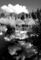 Sprague Lake in BW II