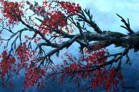 oil paintings Japanese cherry blossom