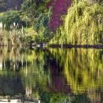 """""""Couleurs automnales sur un lac- Autumn colors on a"""" by Jean-Bernard-MICHEL"""