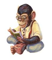 Reading Chimp by Matthew Finger