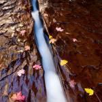 """The Left Fork Crack"" by HiddenLightPhotography"
