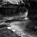 """Monochrome Moments, Zion National Park"" by HiddenLightPhotography"