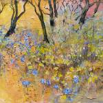 """kings park wildflowers"" by MargaretCoxall"