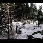 """Snowy Creek"" by Danusunt"