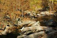 NC_TN_Smokies_LittleRiver_110207
