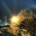 """""""Winter :: HDR"""" by PhilippNB"""
