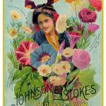 """Johnson Stokes Seed 1898"" by LABELSTONE"