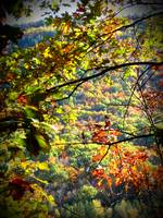 Fall in Jim Thorpe, PA