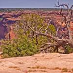 """Canyon De Chelle National Monument-2"" by naturesimages"