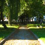 """""""Palmer Cemetery 2"""" by PhillyandMe"""