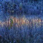 """Stripe Of Light"" by LydiaGaebeBishop"