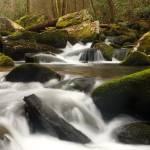 """Smoky Mountain Stream"" by andrewsound"