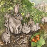 """rabbits"" by lindalou2"