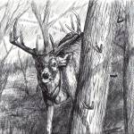 """""""DeerInk2"""" by MrPikeMT1"""