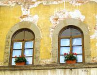 Windows Italy