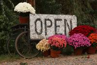 Open Sign and Flowers Fine Art
