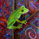 """Tree Frog"" by paintingsbygretzky"